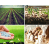 Для аграрного и кормового производства