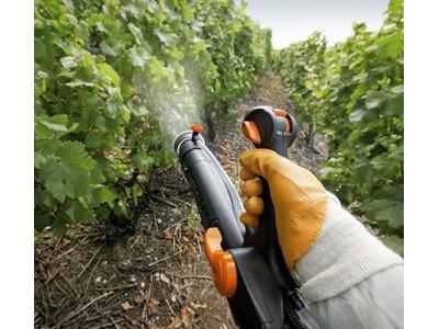 Традиционные и новые удобрения винограда